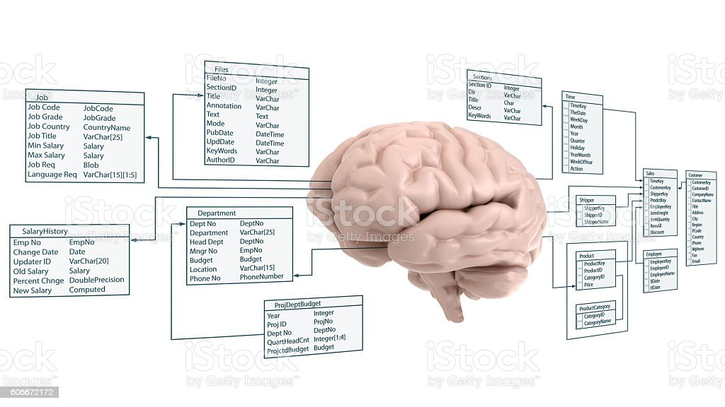 brain and data stock photo