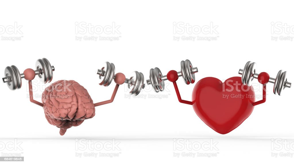 brain and heart holding dumbbells stock photo