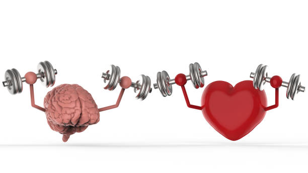 brain and heart holding dumbbells stock photo