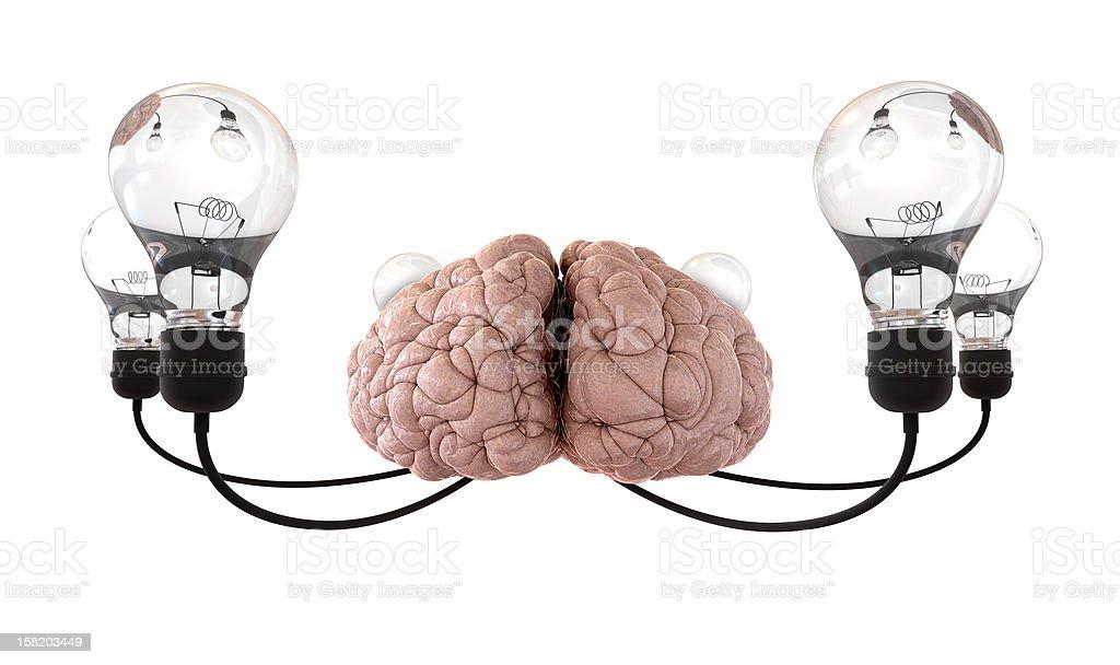 Brain And Lightbulb Imagination White royalty-free stock photo