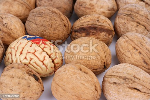 istock Brain and nuts 172868392
