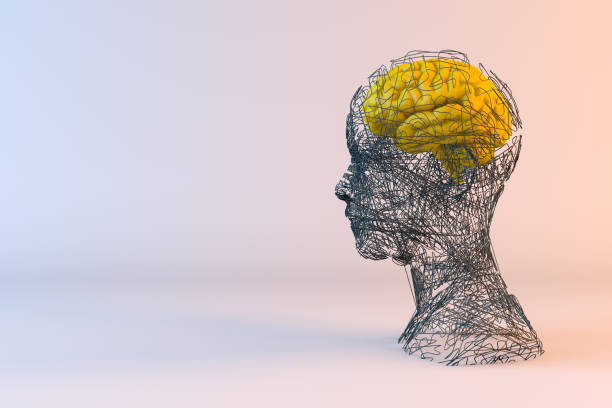 Brain, Artificial Intelligence Concept, Wired shape cyborg Artificial intelligence, machine learning concept with brain neuroscience abstract stock pictures, royalty-free photos & images