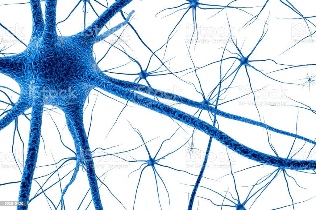 Células Cerebrales 3d Render - Fotografía de stock y más imágenes de ...