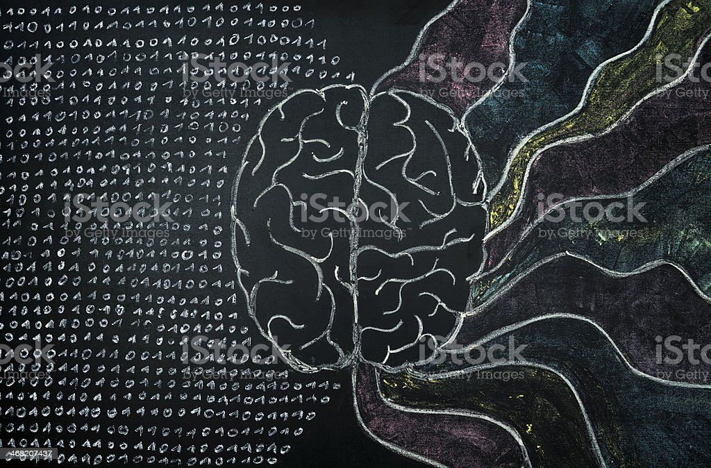 brain chalk blackboard blackboard concept: a human brain on a blackboard. left and right side of the brain Abstract Stock Photo