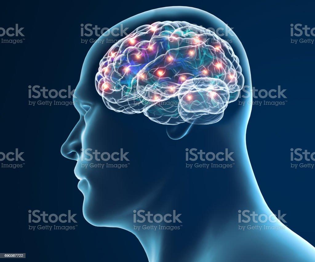 Degenerative Erkrankungen, Parkinson, Gehirn Synapsen, Nervenzellen, Alzheimer Krankheit – Foto