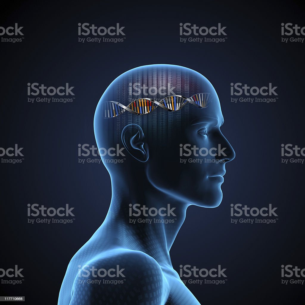 Brain DNA stock photo