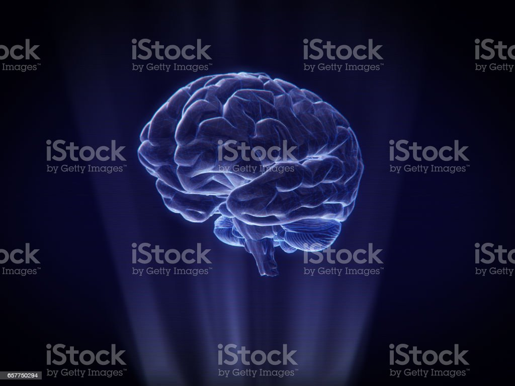 brain Hologram Wireframe Style.3D rendering stock photo