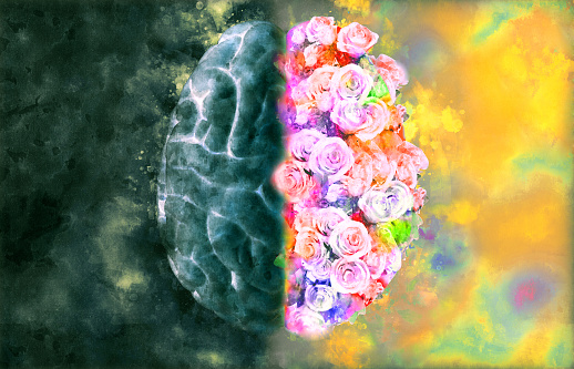 istock Brain illustration with left and right function concept 1034309472