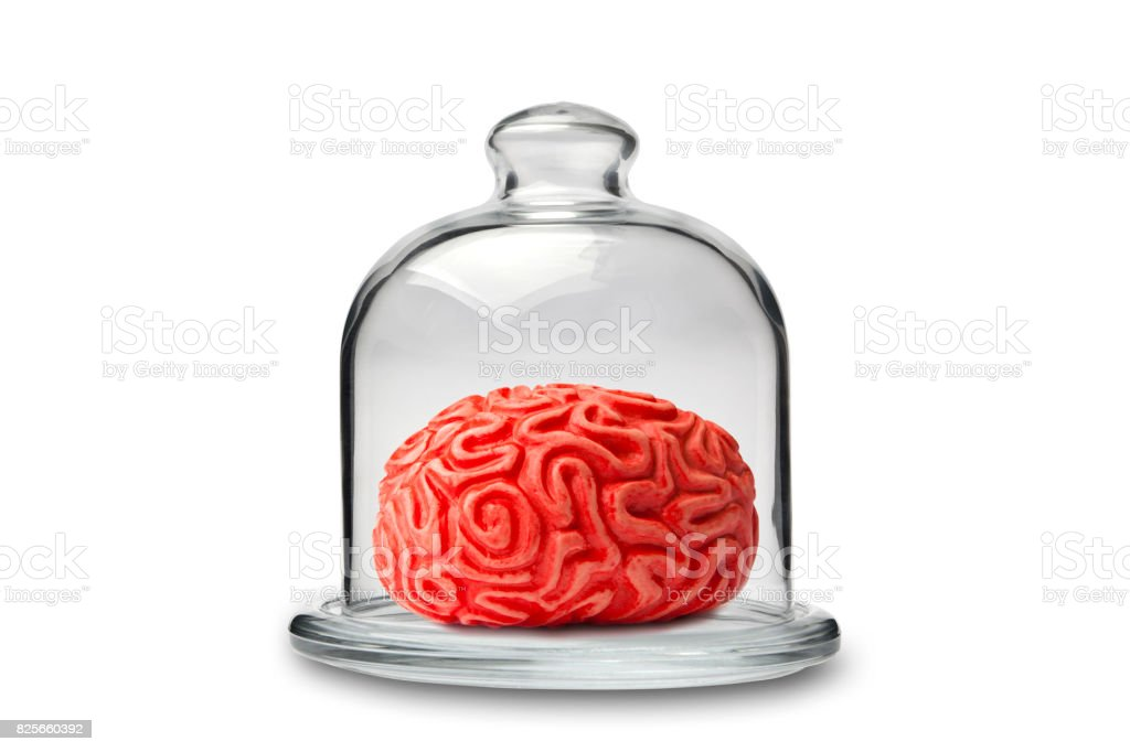 Brain in Crystal Cakestand stock photo