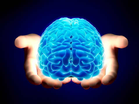 istock Brain in hands - with clipping path 182187446