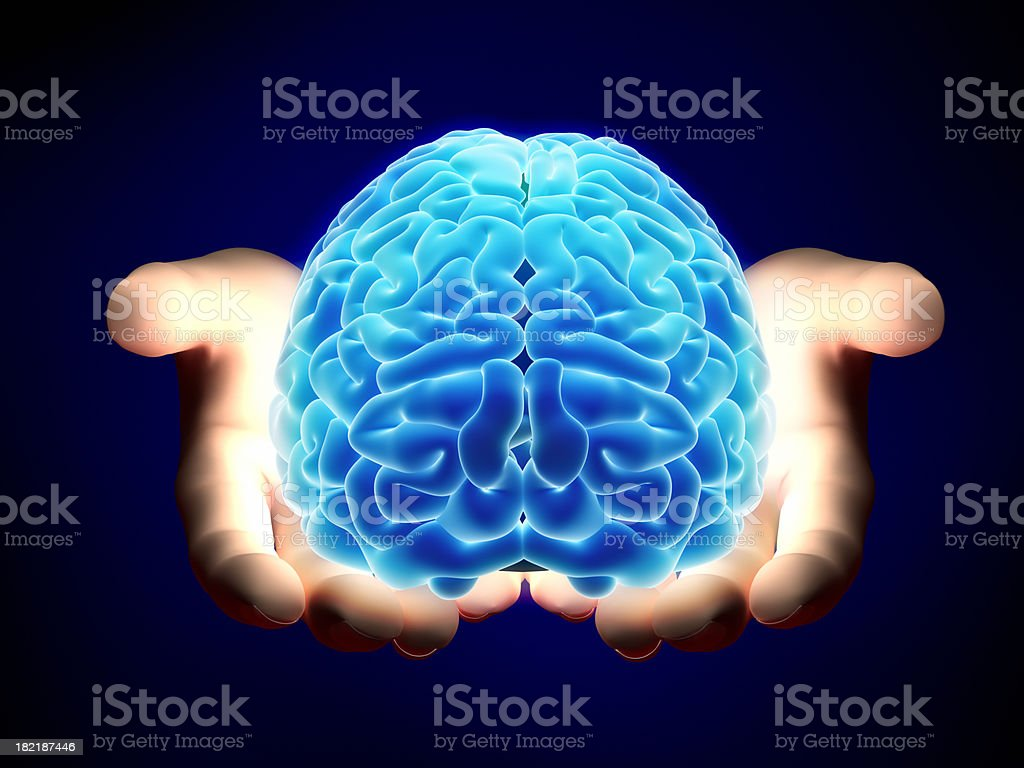 Brain in hands - with clipping path stock photo