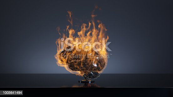 istock Brain in the fire concept 1005641494