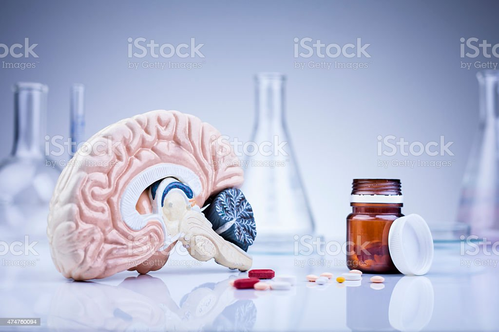 brain in the laboratory stock photo