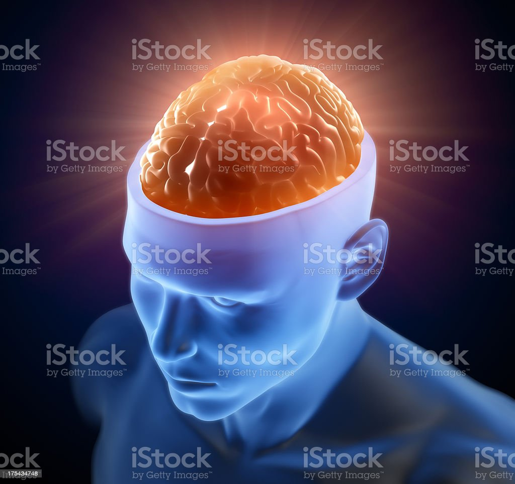 Brain inside head royalty-free stock photo