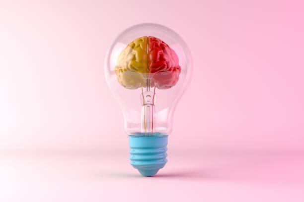 hersenen binnen de gloeilamp, creatief idee concept - creativiteit stockfoto's en -beelden