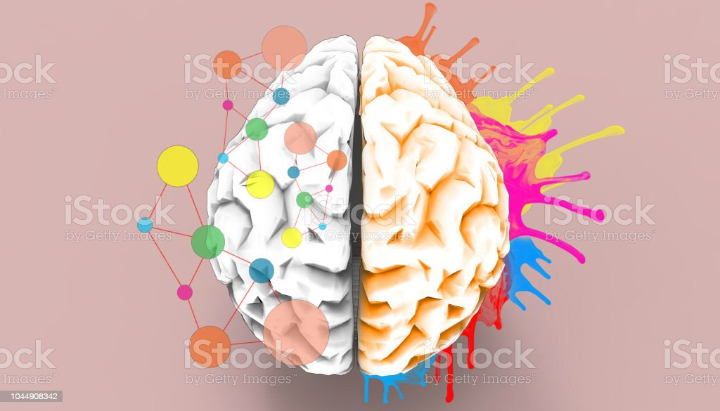 Brain left and right creativity functions   Sketch concept - Royalty-free Abstract Stock Photo