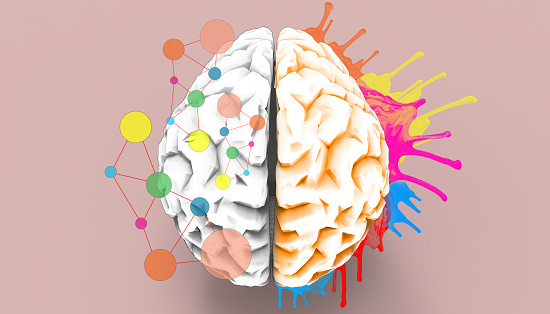 istock Brain left and right creativity functions   Sketch concept 1044908342