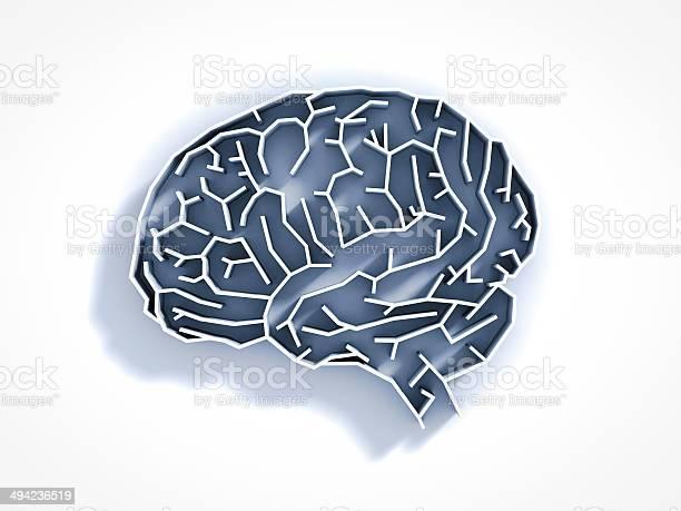 Brain maze picture id494236519?b=1&k=6&m=494236519&s=612x612&h=wjvlln7vpvcukcutd bjxpio t6etqxphbnmroyixwk=