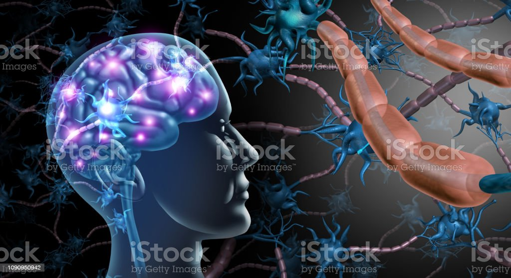 Brain Nerve Cells Brain nerve cells and nervous system anatomy concept as a human neurology and neuron function disorder symbol for multiple sclerosis or alzheimer disease with 3D illustration elements.. Activity Stock Photo