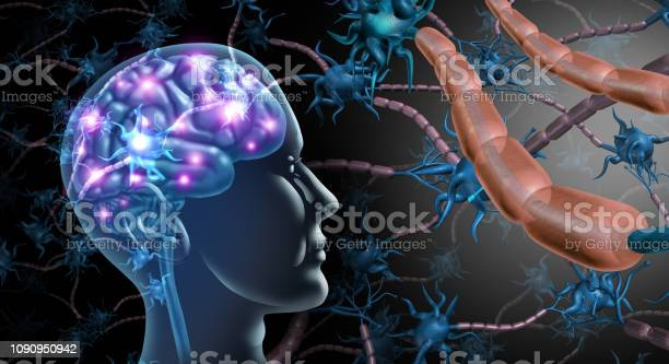 Brain Nerve Cells Stock Photo - Download Image Now