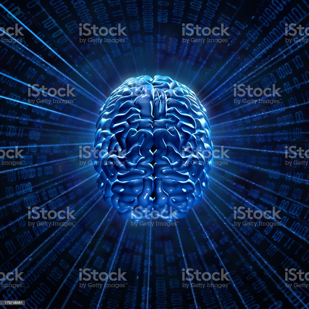 Brain network royalty-free stock photo