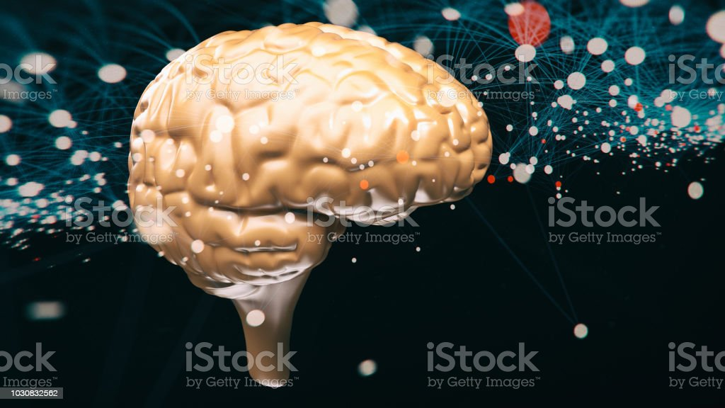 Brain neuron cell system stock photo
