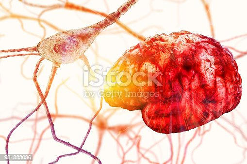 istock Brain neuron research concept Synapse and Neuron cells sending electrical chemical signals, brain plasticity, Synapse between two neurons neural synapse receptors neuron link neural network 981883036