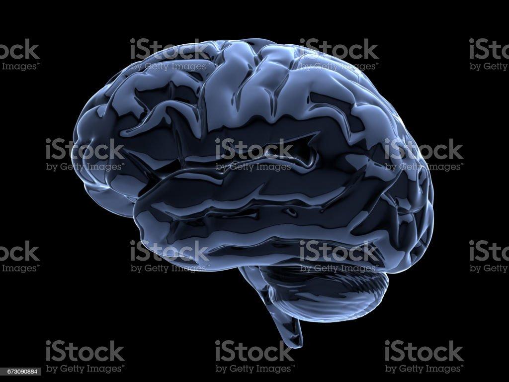 brain on black 3d glass brain on black background Glass - Material Stock Photo