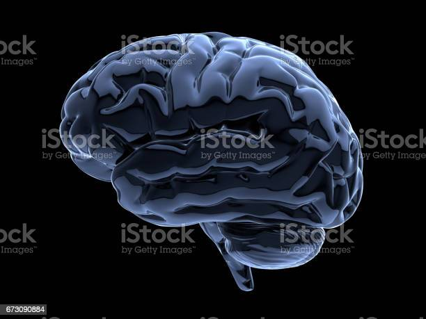 Brain On Black Stock Photo - Download Image Now