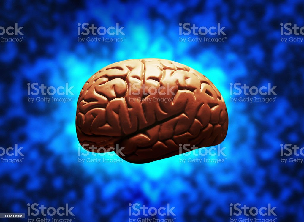 Brain on electric blue royalty-free stock photo