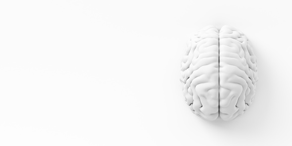 istock Brain On The Wall 545810128
