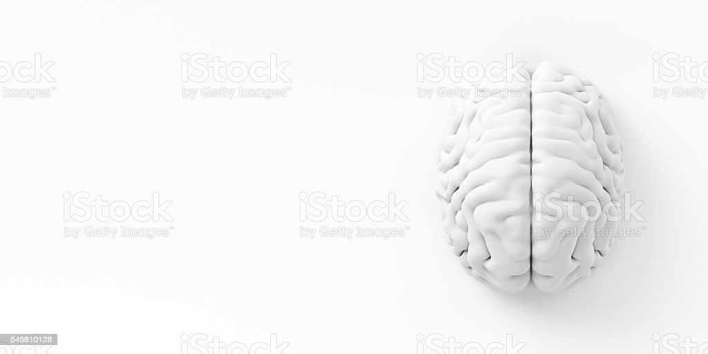 Brain On The Wall stock photo
