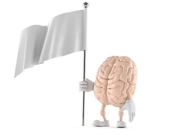 Brain picture id450875229?b=1&k=6&m=450875229&s=612x612&w=0&h=dkg9bbxqpckvq0ce zdx12ba 71udbcf2e3sqjoxeaw=