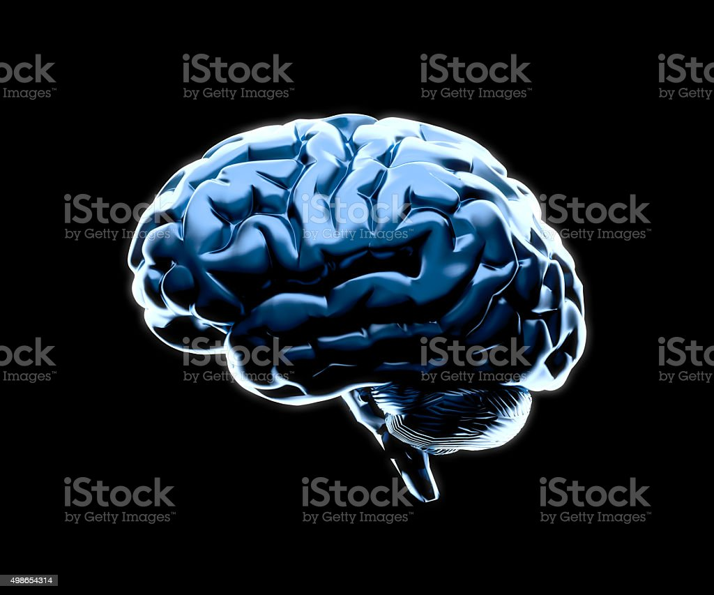 Brain stock photo