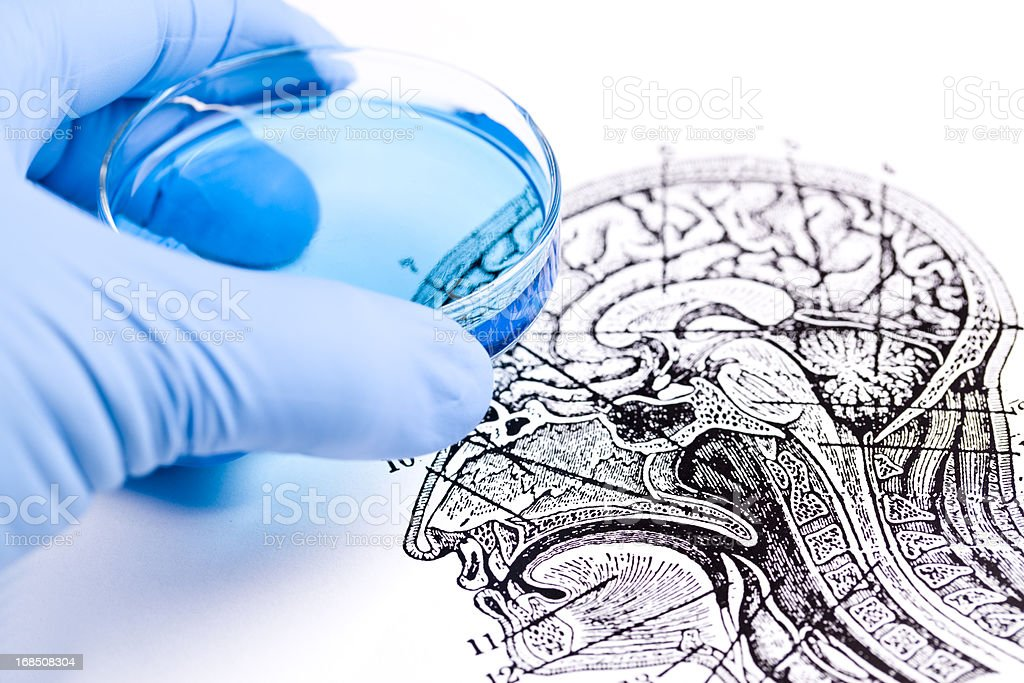 Brain Research royalty-free stock photo