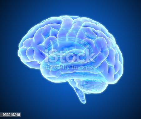 istock Brain scan illustration isolated on dark blue BG 955545246