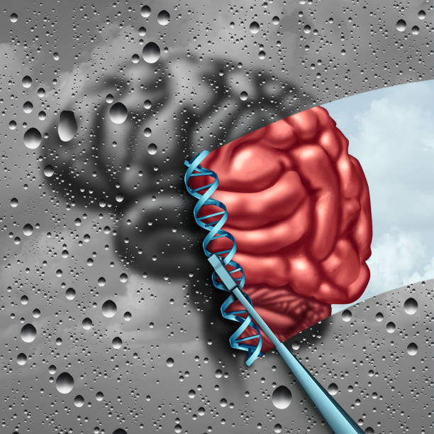 Brain Science Discovery Brain science  and cognitive neuroscience discovery as a mental health psychology or psychiatry stem cell therapy concept with a dna strand with 3D illustration elements. stem cell therapy stock pictures, royalty-free photos & images