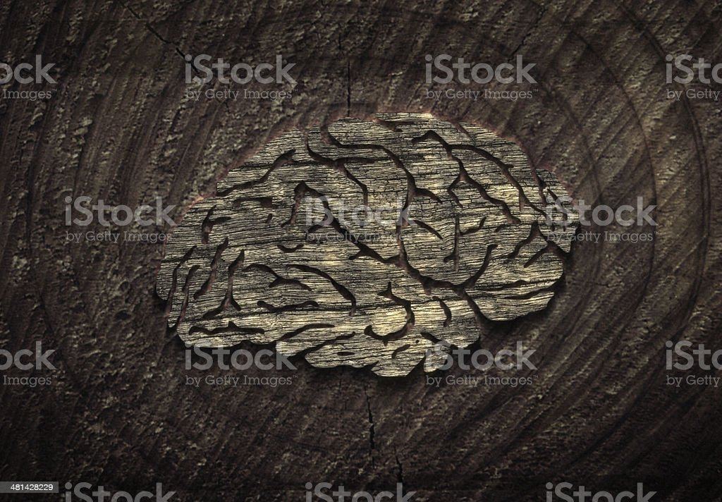 brain texture royalty-free stock photo