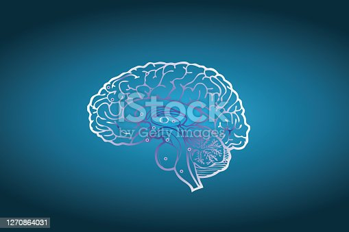 brain thinking concept on blue background