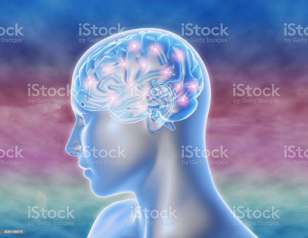 Brain Thinking Functions Neurology Neuroscience Concept With