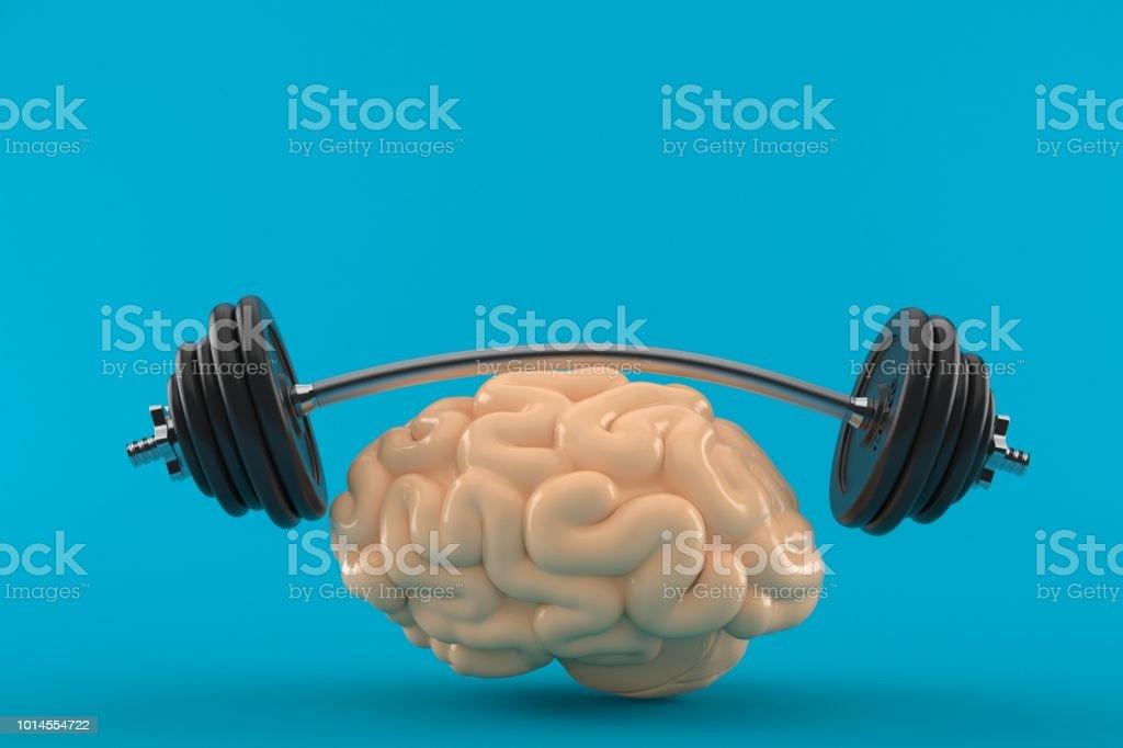 Brain training concept stock photo