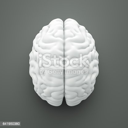 Brain with clipping path, on gray background , 3d render