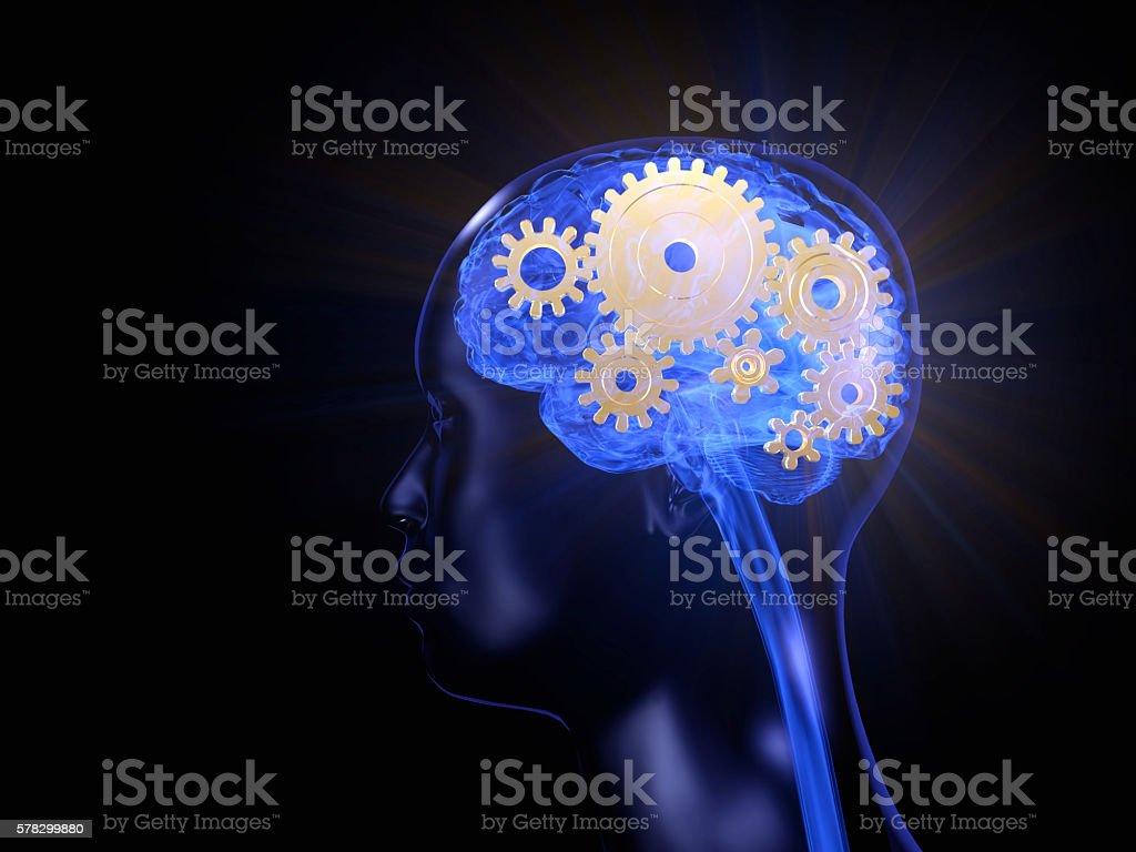 Brain workings stock photo