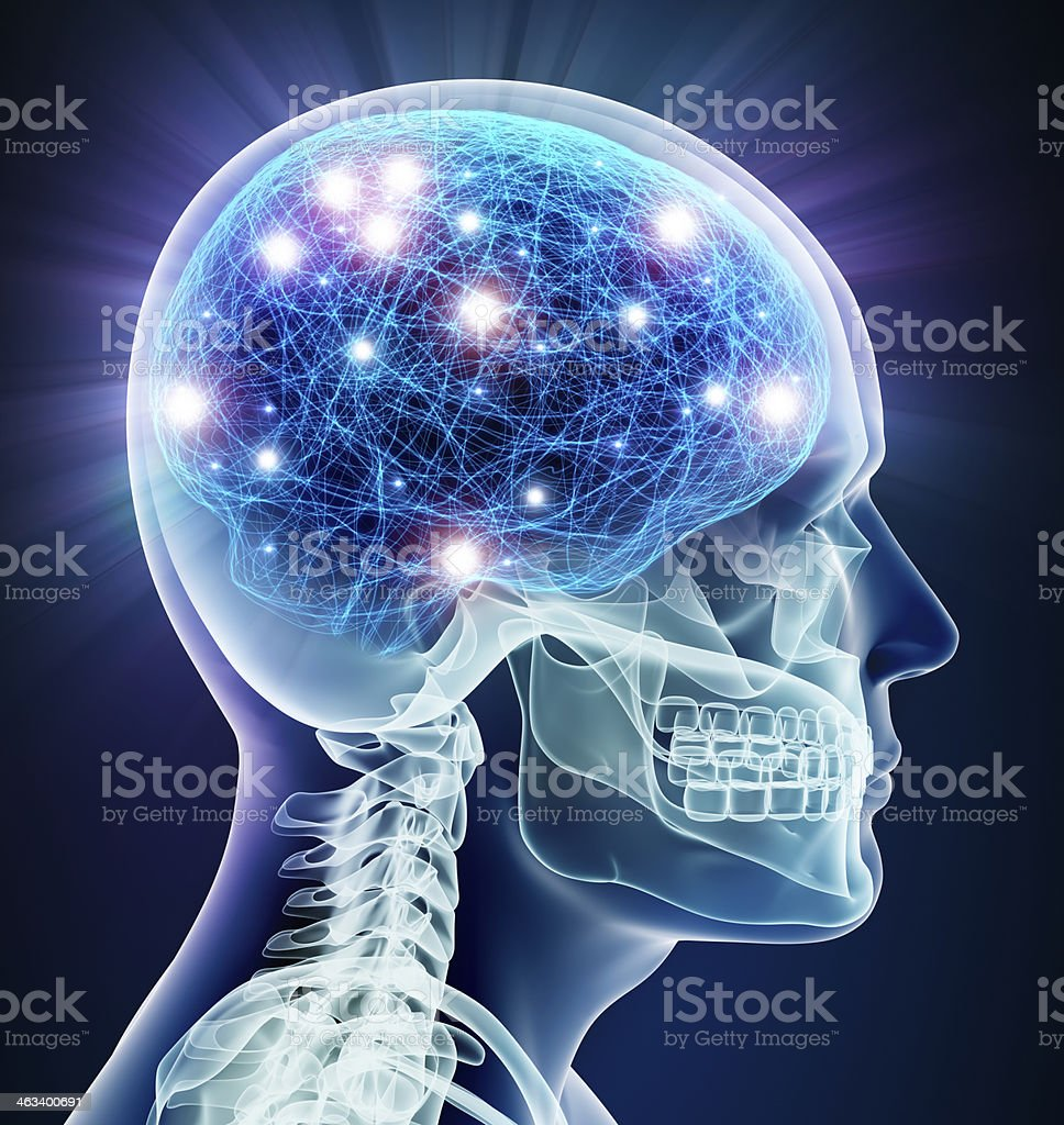 Brain x-ray with neurons stock photo