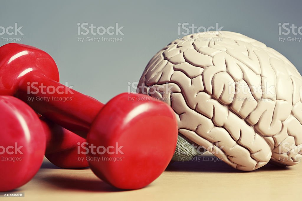 Brains and brawn! Mental and physical exercise improve your mind stock photo