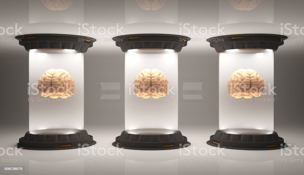 Brains floating inside container cells stock photo
