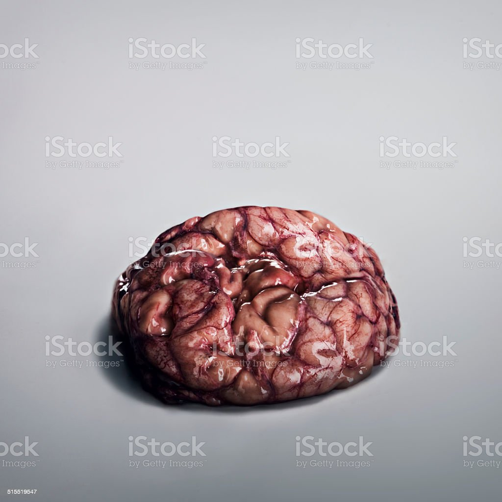 Brainssssss.... stock photo