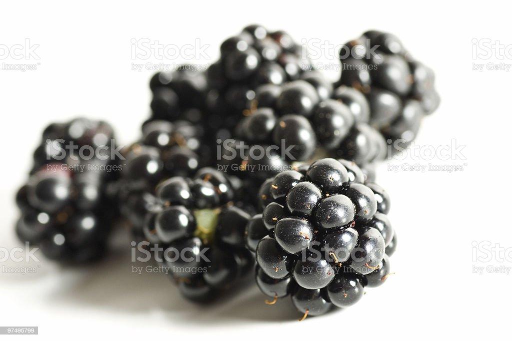 brambleberry foliage isolated royalty-free stock photo