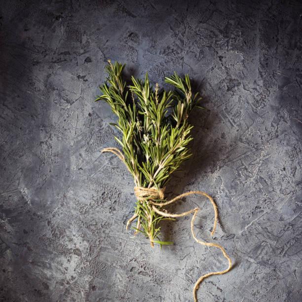 branch bunch fresh rosemary spices - oli, aromi e spezie foto e immagini stock