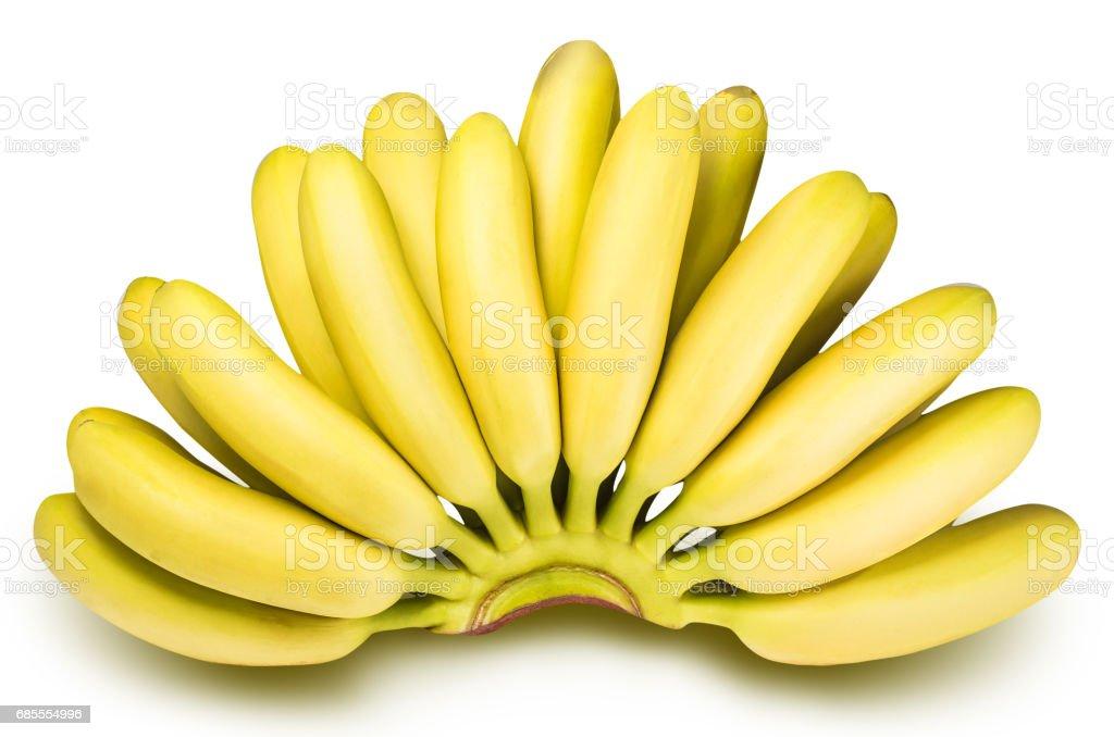 孤立在白色背景上的嬰兒香蕉的分支 免版稅 stock photo